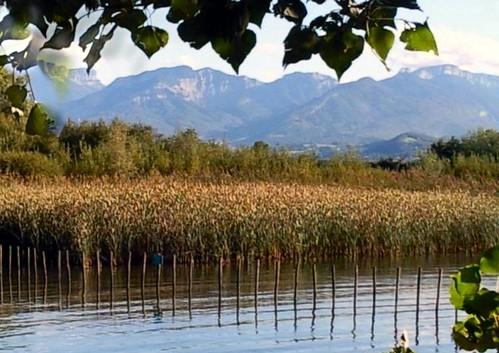 0508 Photo prise du lac du Bourget, Savoie, France.