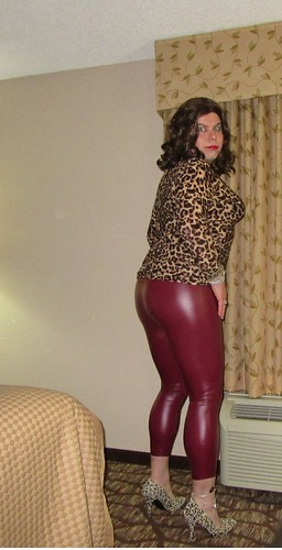 red leather and cougar prints