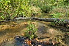Emmons Creek Barrens SNA