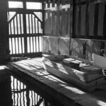 Serpentine Boathouse  (Adox Silvermax)