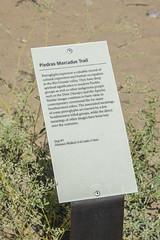 Info sign at Piedras Marcadas petroglyph site in Albuqurque-06 10-10-19