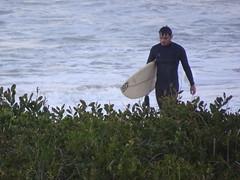 Pensive Surfer