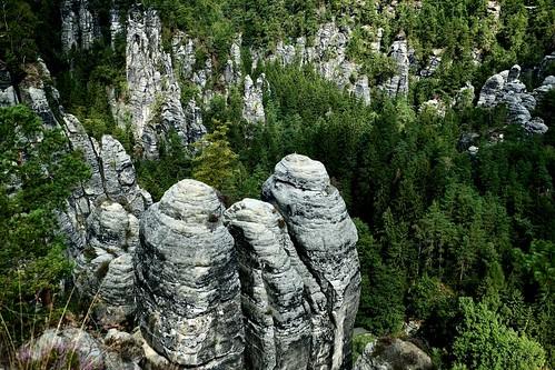 Elbsandsteingebirge / Sächsische Schweiz / Sachsen (Saxony)