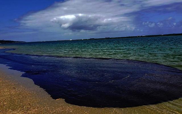 Cabo de Santo Agostinho (PE): óleo empossado é pequena parte do desastre que se espalhou; Ministério do Meio Ambiente demorou a agir  - Créditos: Salve Maracaípe/ Fotos Públicas