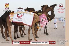 صور منافسات مهرجان قطر الثالث للمجاهيم والوضح (شوط الجمل 15 تلاد) للقبائل 17-11-2019