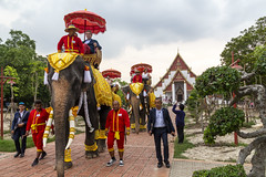 Tourists ride on elephants in front of the temple hall of Viharn Phra Mongkol Bopit