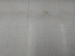 salesfloor floor (floor)