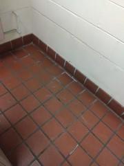 floor n' wall