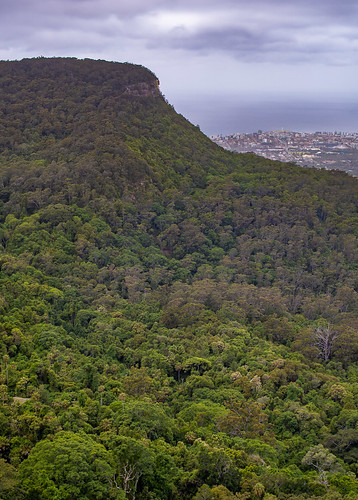 Mount Keira and Wollongong from Robertson's Lookout