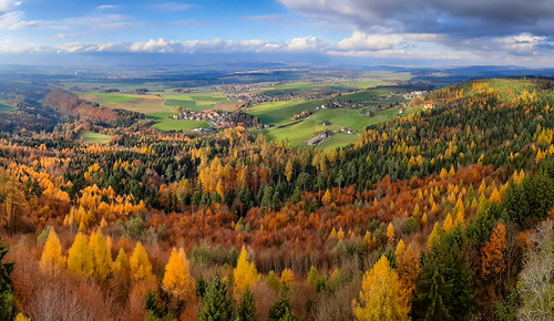 Panorama from Frienisberg