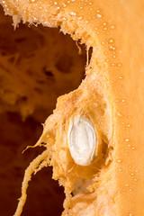 Nahaufnahme eines Kürbiskerns im Fruchtfleisch eines Kürbises