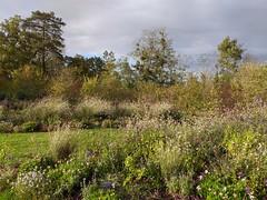Gardens, Château de Chaumont-sur-Loire