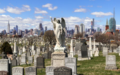 Lynch - View over Calvary Cemetery