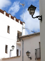 Looking Up:  Cartajima, Málaga Province, Andalucía