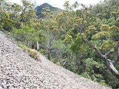 The Peak Looms - Mt Toolbrunup, Stirling Ranges, Western Australia