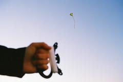 Distant Kite