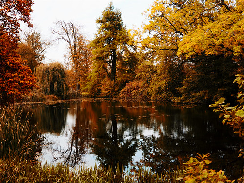 Autumn mood in the castle park of Eutin