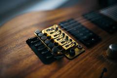 Closeup of golden floydrose on electric guitar