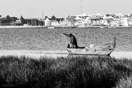 O Pescador | The Fisherman...