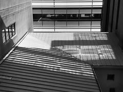 windows at Presbyterian