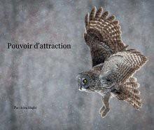 Pouvoir d'attraction