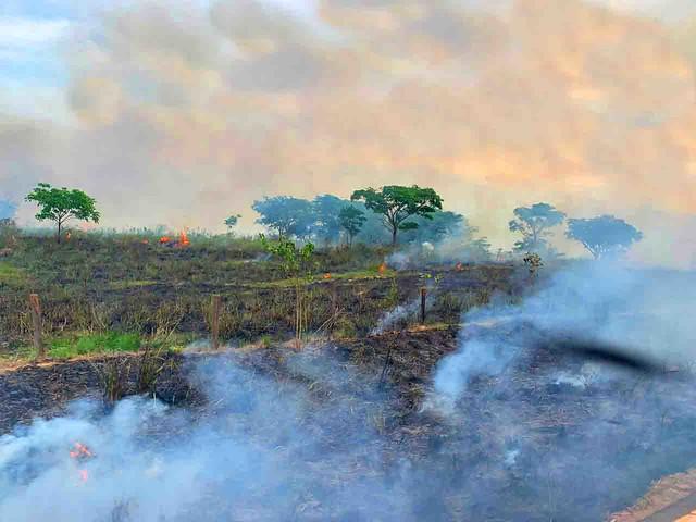 Queimada registrada em 26 de outubro na BR-155, em Eldorado do Carajás, no Pará; rodovia vai de Marabá a Redenção. - Créditos: Catarina Barbosa   Brasil de Fato