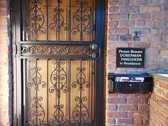Doberman Pinschers In Residence