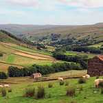 Swaledale, Yorkshire by Bill Wastell
