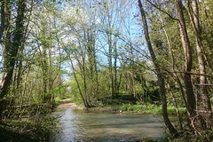 CANAL DE BOURGOGNE 024