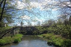 CANAL DE BOURGOGNE 023