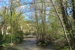 CANAL DE BOURGOGNE 022