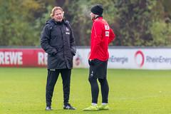 Markus Gisdol als neuer FC Trainer im Einzelgespräch mit Rafael Czichos