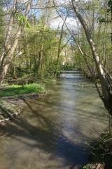 CANAL DE BOURGOGNE 021