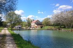 CANAL DE BOURGOGNE 010