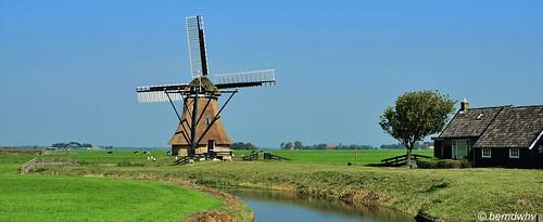Niederlande / Provinz Friesland/ Huins / De Huinsermolen / Baujahr: 1829