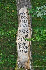 DSC07030.jpeg - Kunst im Wald