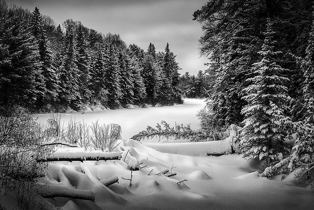 Rivière Noire sous la neige