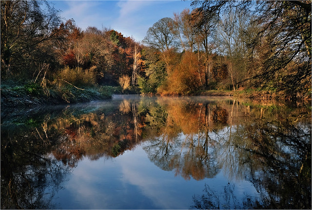River Lagan autumn reflections