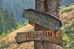 DSC07038.jpeg - Kunst im Wald