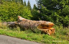 DSC07033.jpeg - Kunst im Wald