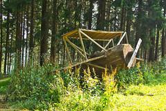 DSC07065.jpeg - Kunst im Wald