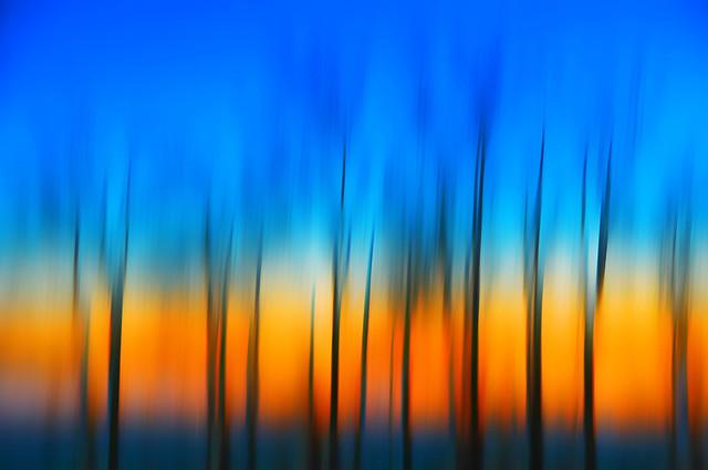 Nature poétique