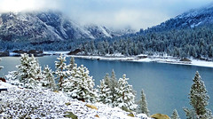 Dusting of Snow, Spring, Tioga Lake, Yosemite 2015