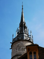Burgund Burgundy - Photo of Lindry