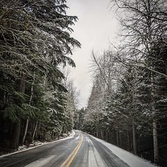 Going-to-the-Sun Road #glacierpark #montana #road #trees #snow