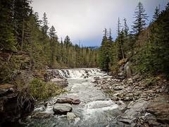 McDonald Falls #glaciernationalpark #glacier #montana #creek #falls #forest #trees