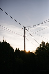 Power poles in the evening.