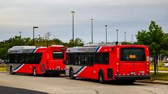 WMATA Metrobus 2019 New Flyer Xcelsior XD40 #4455 & 2006 New Flyer D40LFR #6192