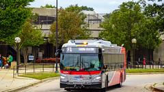 WMATA Metrobus 2019 New Flyer Xcelsior XD40 #4454