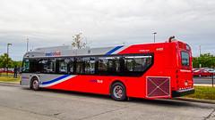 WMATA Metrobus 2019 New Flyer Xcelsior XD40 #4455